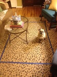 leopard rug 1