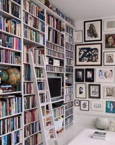 bookshelves with tv