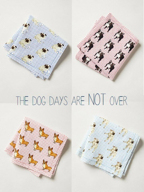 dog days cocktail napkins the lovely lifestyle
